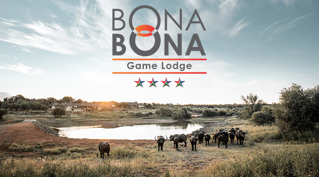 bona bona, estate wedding venue, bona bona spa, conference facilities, klerksdorp accommodation, north west hunting, game lodge